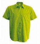 Chemise homme vert