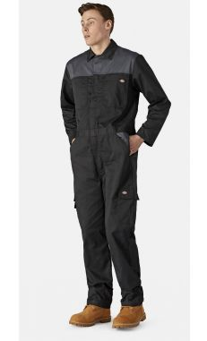 Combinaison EVERYDAY homme - Dickies
